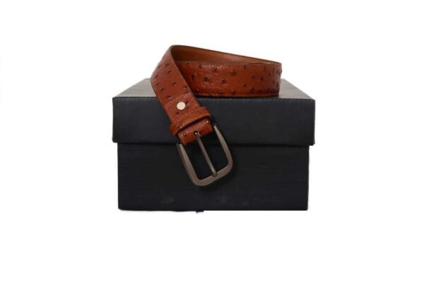 Leather Belts in Ostrich Texture